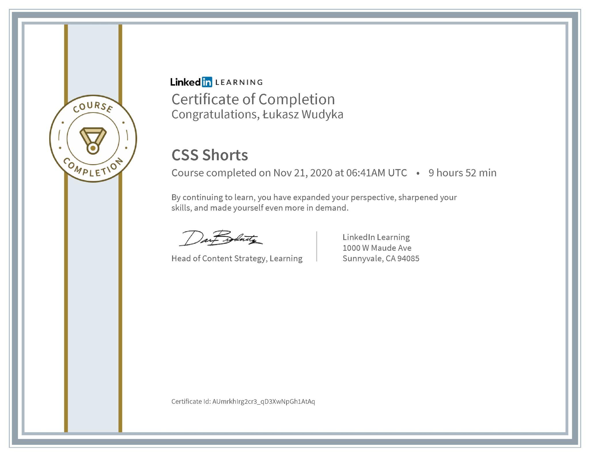 Łukasz Wudyka certyfikat LinkedIn CSS Shorts